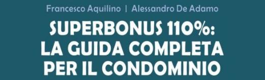 Interpelli Superbonus 110%